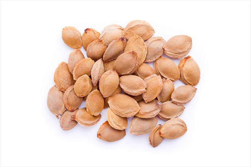 Apricot-seeds
