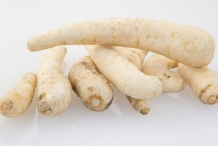 Arracacha-root