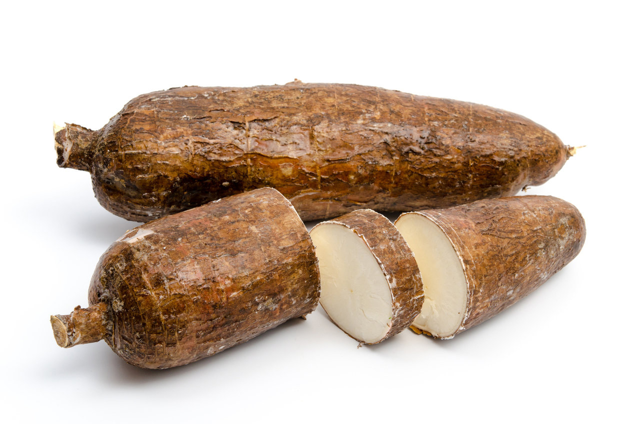Half-cut-Arrowroot