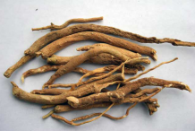Ashwagandha-Root