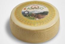 Wheel-of-Asiago-cheese