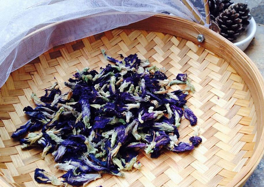 Dried-flowers of Asian-pigeonwings