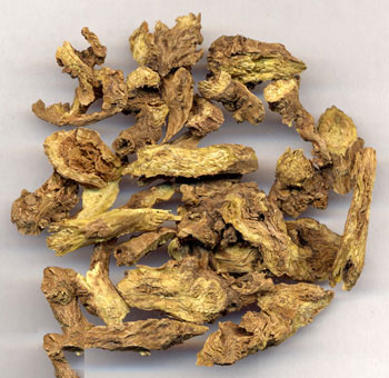 Dried-roots-of-Baical-Skullcap