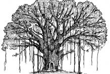 Sketch-of-Banyan-Tree