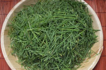 Chopped-Bermuda-Grass