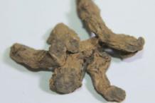 Dried-Black-Turmeric