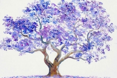 Sketch-of-Blue-Jacaranda