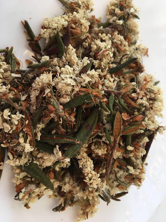 Dried-Bog-Labrador-Tea