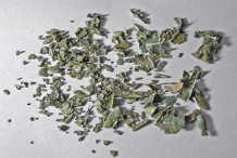 Dried-pieces-of-Boldo-leaves