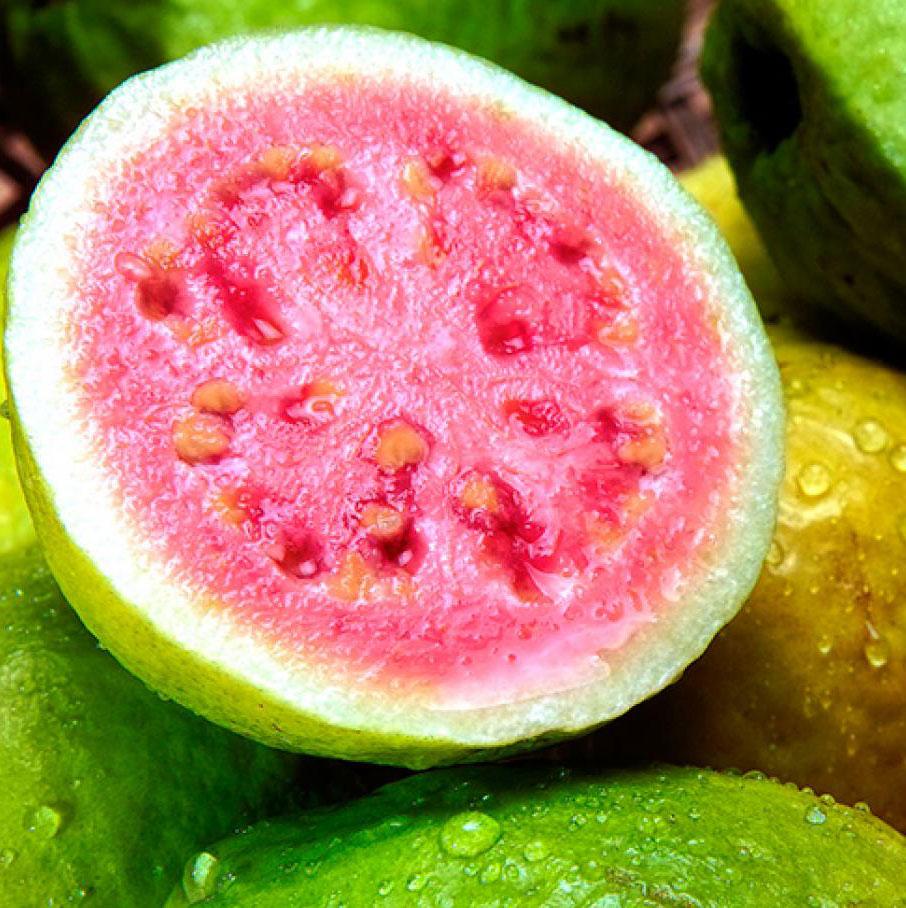 Half-cut-Brazilian-guava