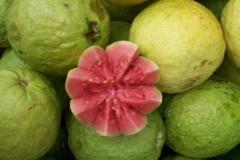 Brazilian-guava