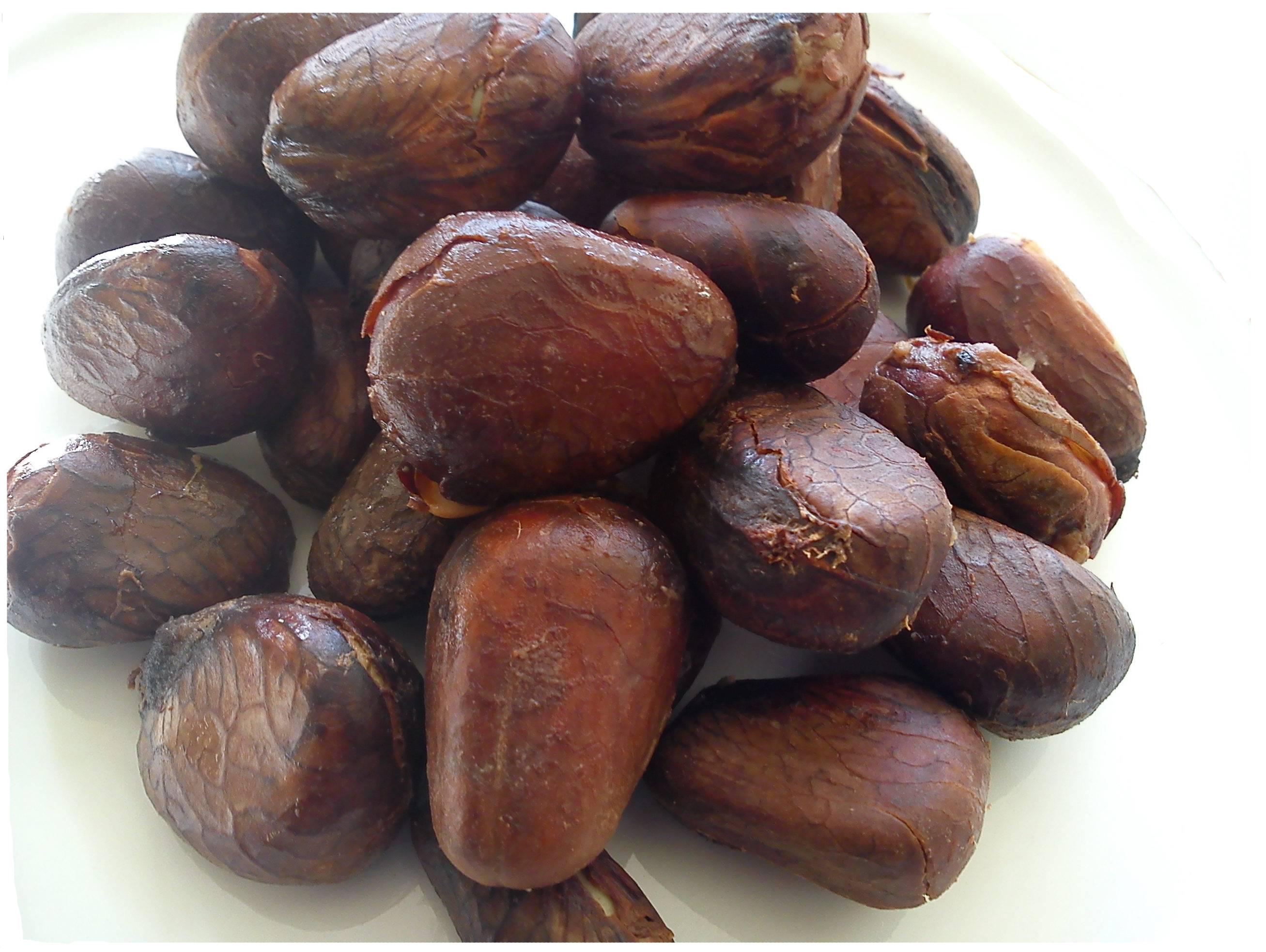 Breadfruit-seeds-7