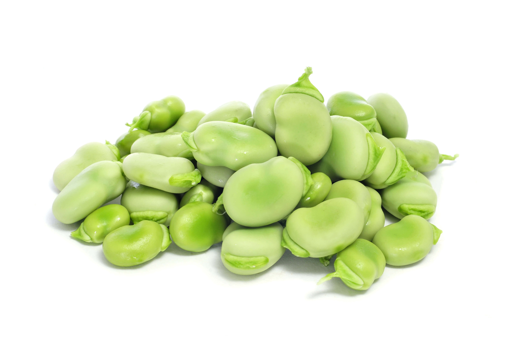 Seeds-of-Green-beans