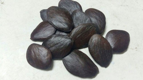 Seeds-of-Buchu