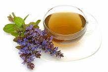 Bugleweed-Tea