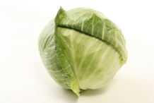 Cabbage-head