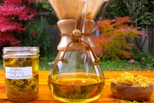Calendula-oil