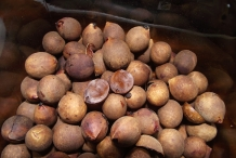 California-bay-nuts