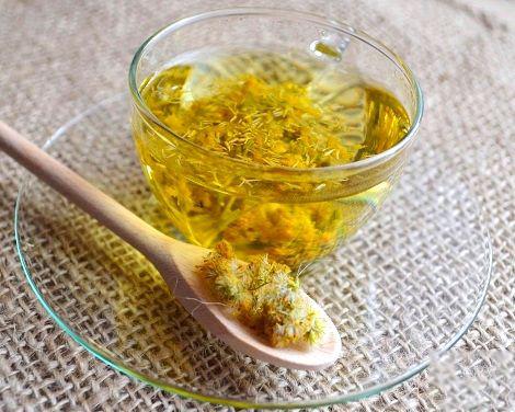 Canadian-Goldenrod-tea