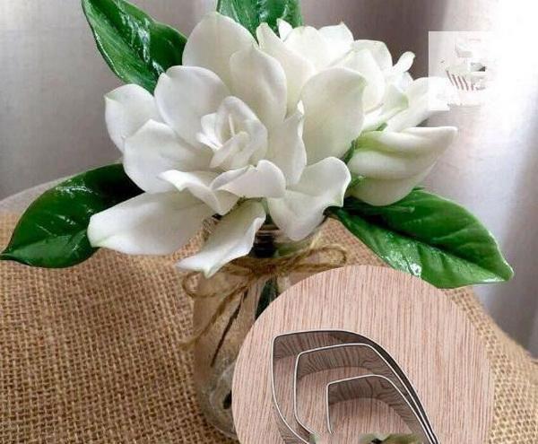 Cape-jasmine-flowers-for-decoration