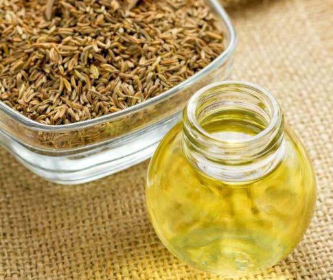 Caraway-seed-oil