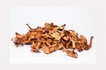 Dried-Chanterelle-mushroom