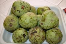 Cherimoya-fruit