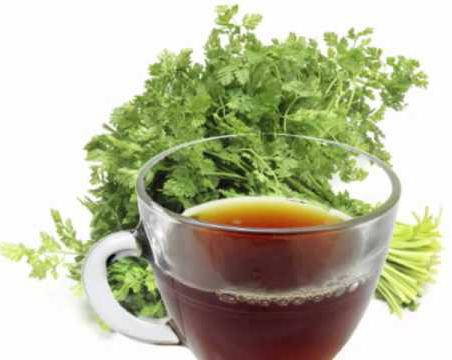 Chervil-Tea