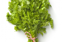 Bunch-of-Chervil-plant