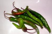 Chili-pod
