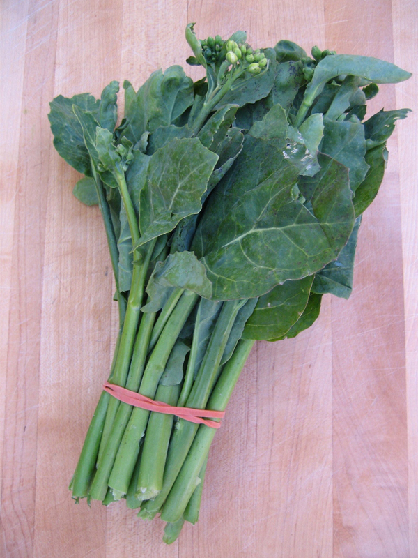 Leaves-of-Chinese-broccoli