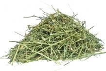 Dried-Chiretta