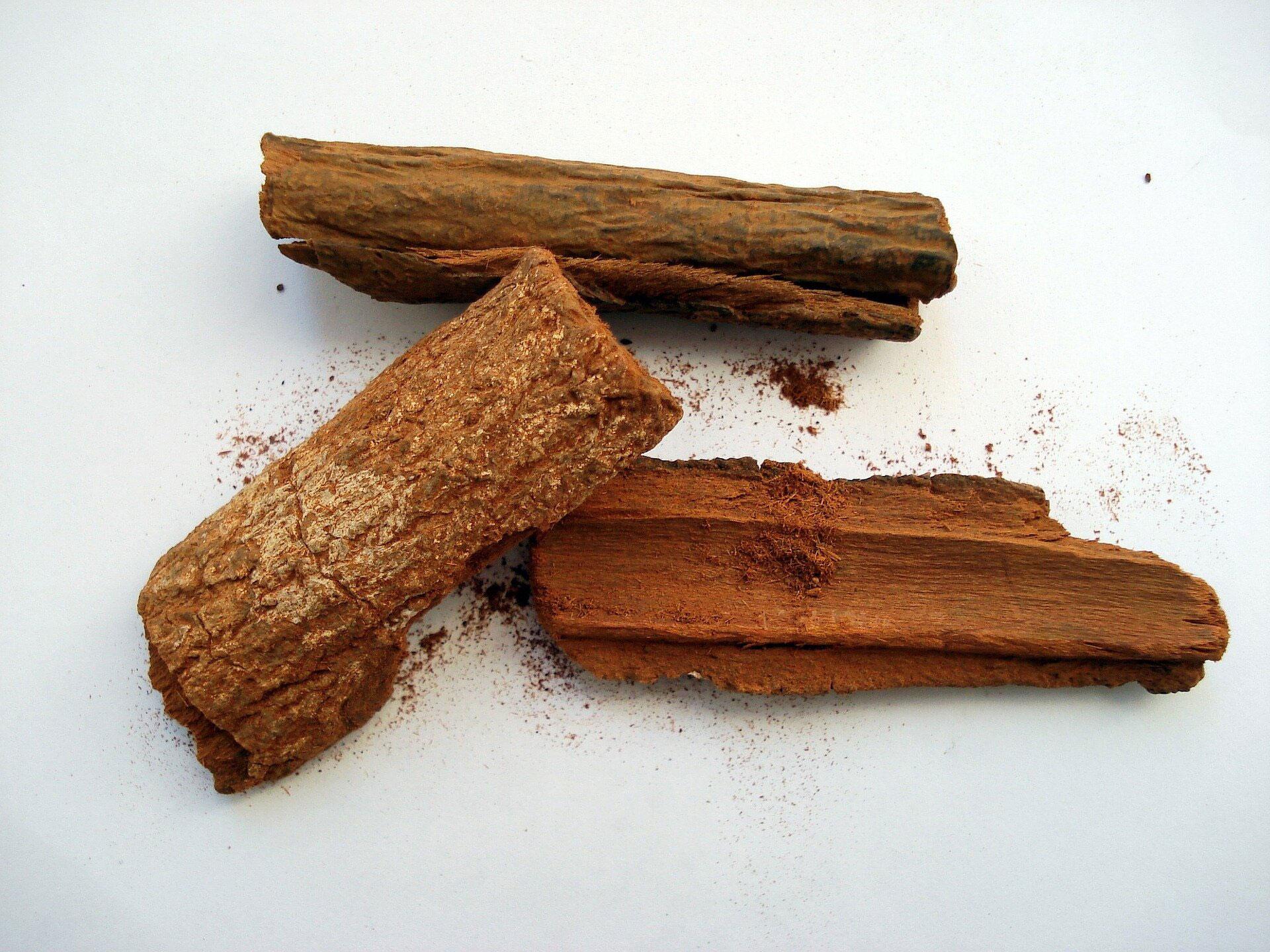 Cinchona-bark