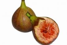Cluster-fig-cut
