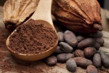 Cocoa-bean-powder
