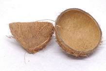 Coconut-shell