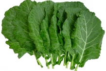 Leaves-of-Collard-greens