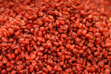 Dried-barberry