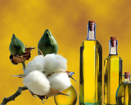 Cottonseed-oil