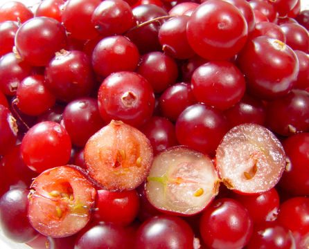 Cranberry facts and health benefits