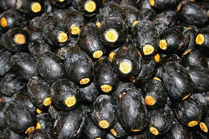 Ripe-Dabai-fruit