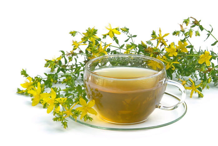 damiana facts and health benefits, Skeleton