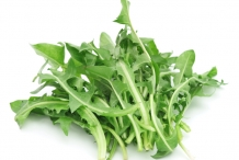 Dandelion-greens