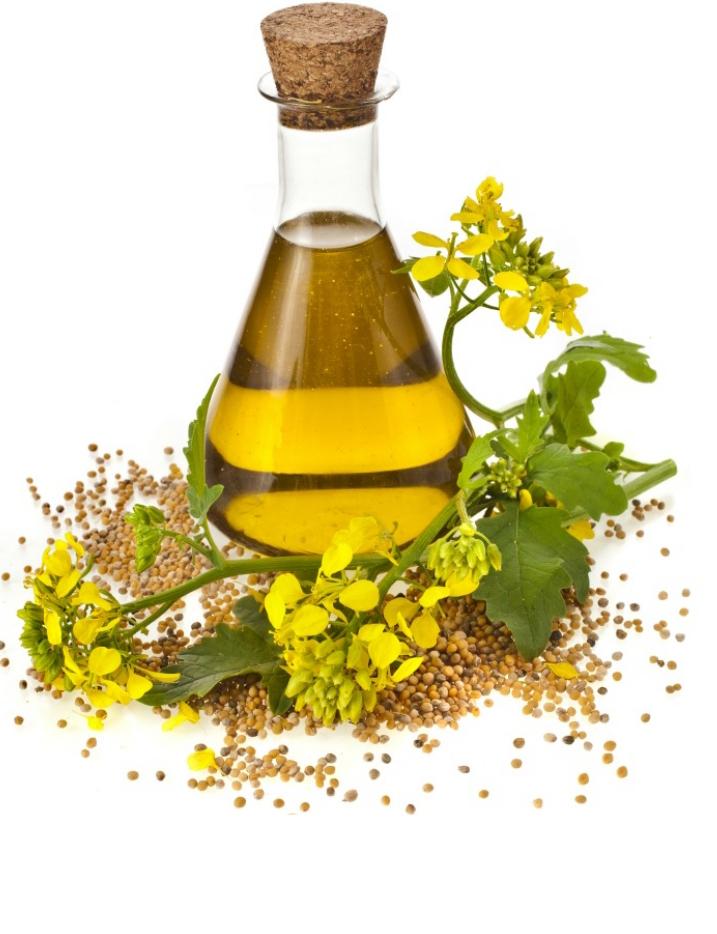 Dill-oil