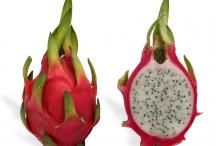 Half-cut-Dragon-fruit