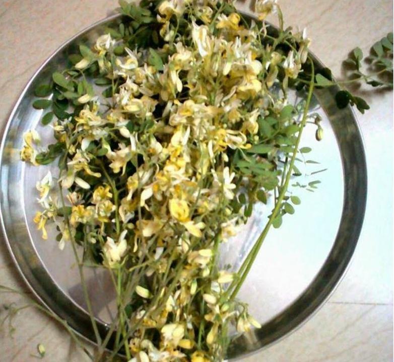 Drumstick-dried-flower