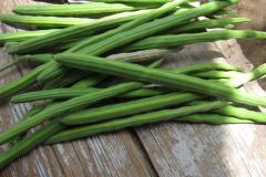 Drumstick-green-pods