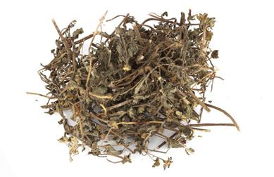 Dried-Herb-of-False-daisy