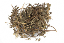 Dried-Herb-of-False-daisy