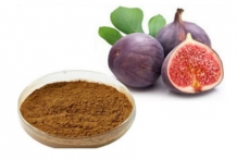 Figs-extract